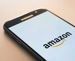 Amazon Seller Financing