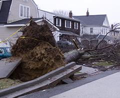 Hurricane Ida Recovery Resources